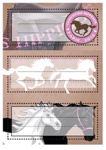 Bilde av VARIO boketiketter Hester, glitter, 2 ark (10