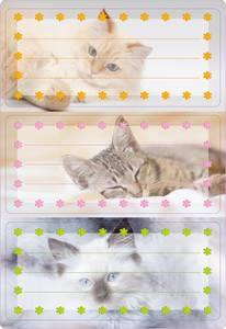 Bilde av VARIO boketiketter Katter med glitter, 2 ark (10