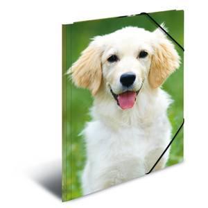 Bilde av HERMA strikkmappe i plastmateriale, A4, Dyr, Hund